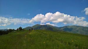 MTB/FIAB/CAI - Nei boschi di Vesale @ Vesale | Vesale | Emilia-Romagna | Italia