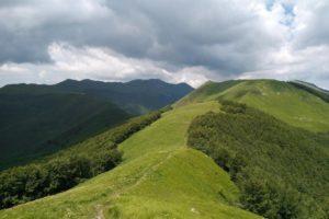 """Nella """"Selva Romanesca"""" tra S.Geminiano e S.Pellegrino in Alpe @ Piandelagotti"""