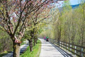 Le ciclabili del Garda del Nord @ Riva del Garda